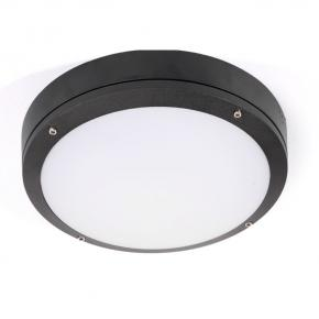 14W  D275X86mm LED Wall light-Full moon